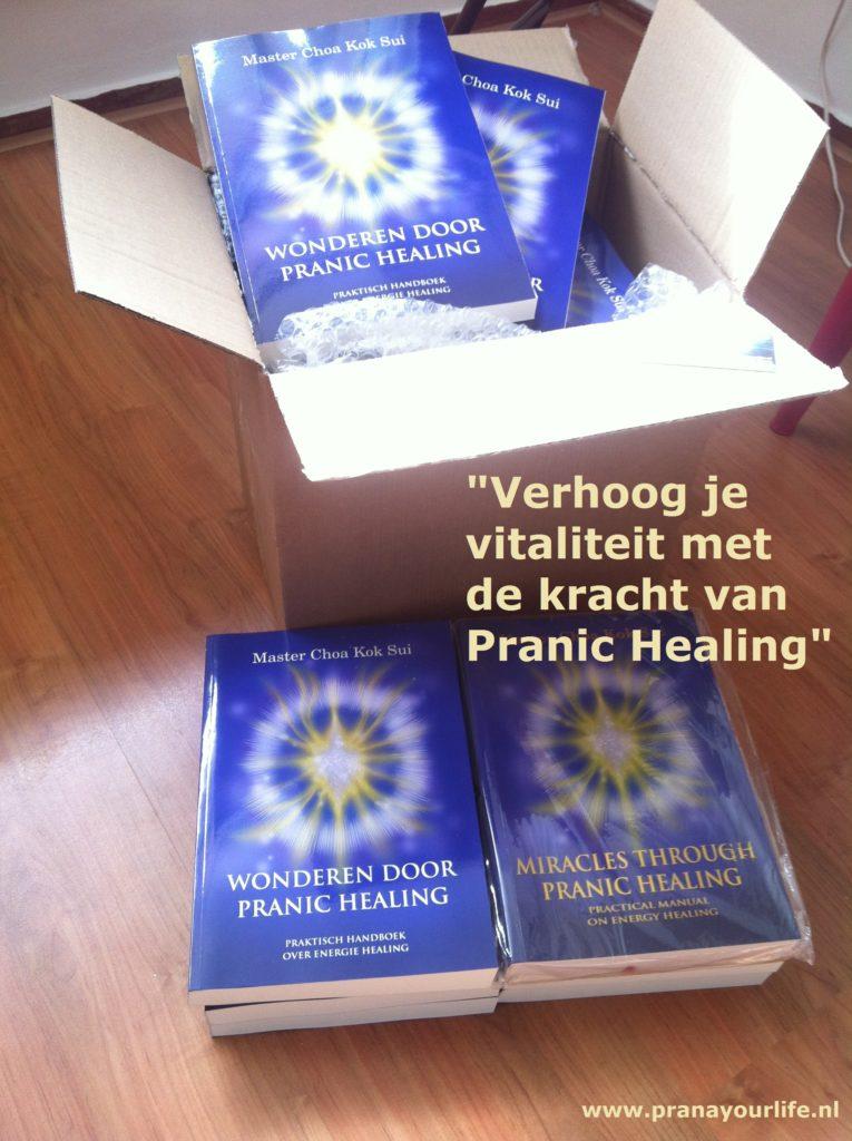 Dit is het praktische Pranic Healing handboek geschreven door Master Choa Kok Sui. Met heldere uitleg en eenvoudige stappen kan je met eigen handen de gezondheid van jezelf, anderen en op afstand vele malen sneller bevorderen.