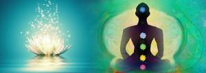Pranic-Healing-Courses-chakra's